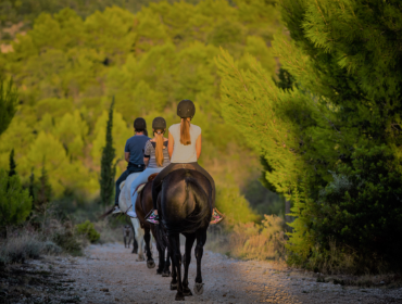 Home Box_Signature Experiences_Horseback riding